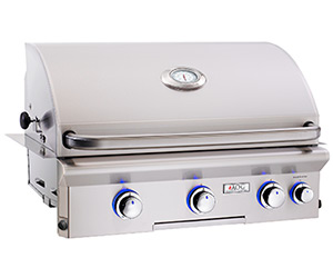 American Outdoor Grill Best Built-In Gas Grill